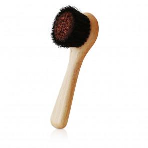 Facial Ionic Dry Brush